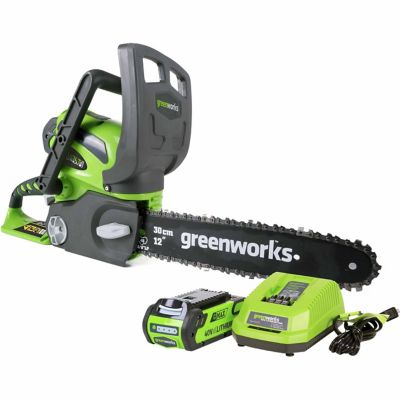 Buy Greenworks 20262 G-MAX 40V 12 in. Cordless Chainsaw Includes 2Ah Battery and Charger Online