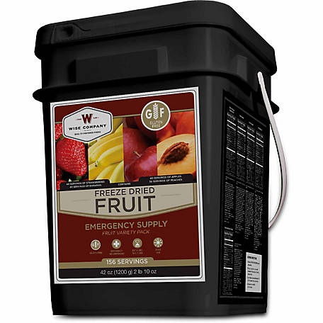 Wise Company Freeze Dried Fruit Bucket, 156 Servings