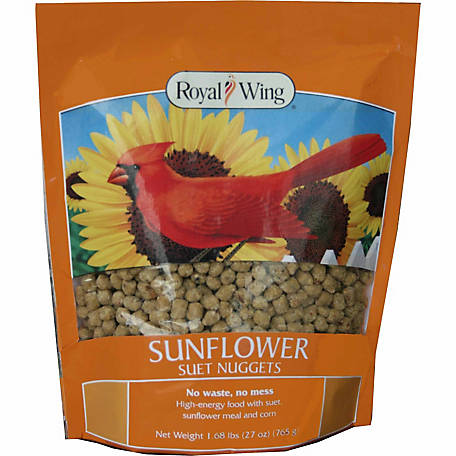 Royal Wing Sunflower Suet Nuggets, 27 oz.