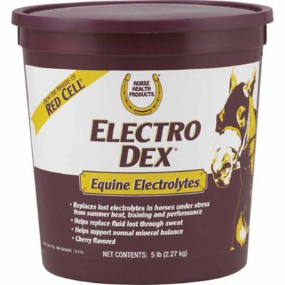 Buy Horse Health Electro Dex Electrolytes; 5 lb. Pail Online