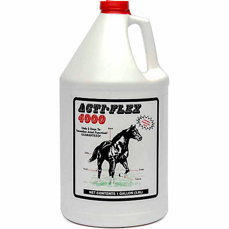 Cox Vet Laboratory, Inc. Acti Flex 4,000 Liquid Joint Supplement, 1 gal.