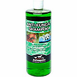 First Companion Anti-Fungal Shampoo, 32 oz.