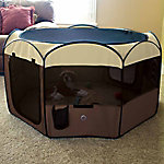 Ware Manufacturing Deluxe Pop-Up Playpen, Medium