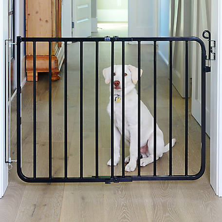 Cardinal Autolock Safety Gate, 26-1/2 to 40-1/2 in. W x 29-1/2 in. H