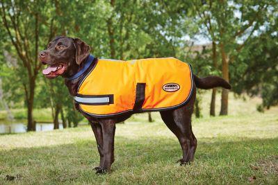 Weatherbeeta Reflective Parka 300d Dog Coat; Orange