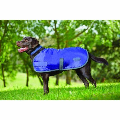 Weatherbeeta Windbreaker 420D Dog Coat; Violet/Grey