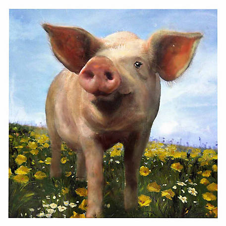 Crestview Pig Out Canvas, 40 in. x 50 in.