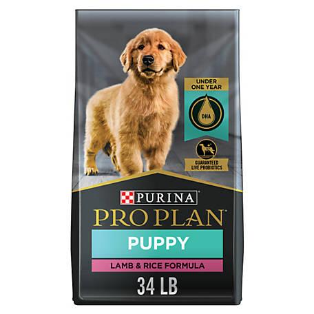 Purina Pro Plan Focus Puppy Lamb Rice Formula Dog Food 34 Lb Bag