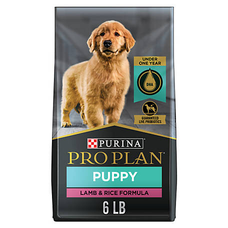 Purina Pro Plan FOCUS Lamb & Rice Formula Dry Puppy Food - 6 lb. Bag