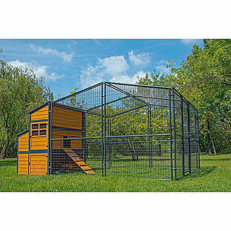 Producer's Pride Defender Chicken Coop, Up to 14 Chickens
