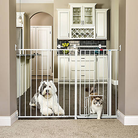 Carlson Maxi Extra-Large Walk-Thru Gate