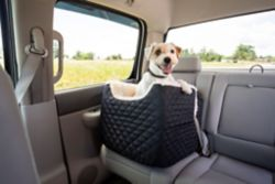 Shop Pet Travel at Tractor Supply Co.