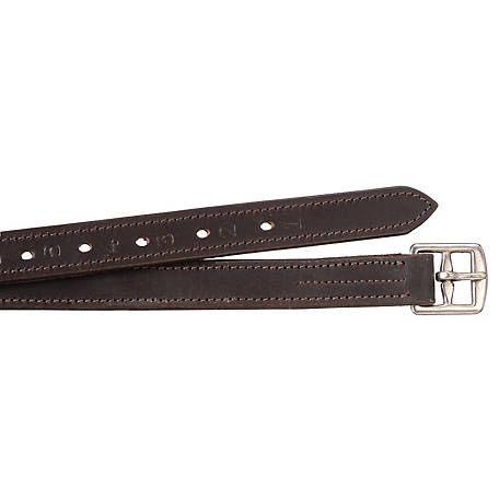 Tough-1 Nylon Lined Stirrup Leathers, 54 in.