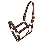 Tough-1 Leather Track Halter
