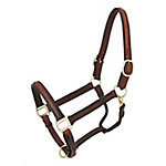 Tough-1 Raised Leather Halter, Horse, Brown