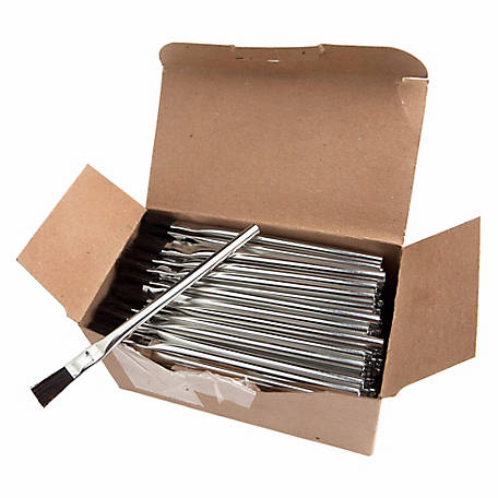 Forney 38141 Tinning Brushes, Pack of 144
