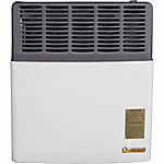 Ashley Direct Vent 11,000 BTU Heater, LP Gas