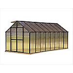 Monticello 8 ft. x 16 ft. Black Greenhouse, Premium Package