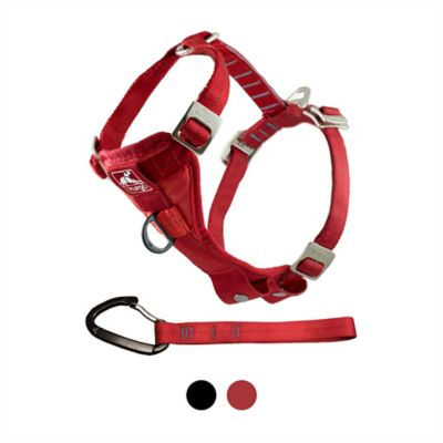 Buy Kurgo Tru-Fit Smart Harness; Enhanced Strength Online