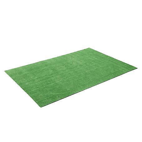 Barn Star Artificial Grass 3 ft. x 13