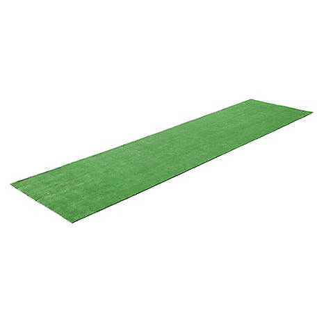 Barn Star Artificial Grass