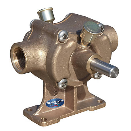 Superior Pump 1 in. Bronze Paddle Pump, BP21X