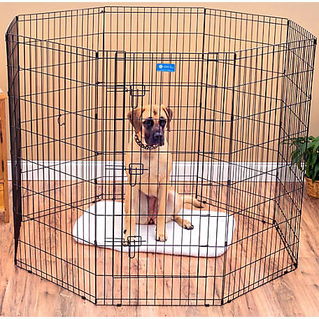 Lucky Dog 48 in. Dog Exercise Pen with Stakes, ZW 11648