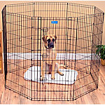 Lucky Dog 48 in. Dog Exercise Pen with Stakes