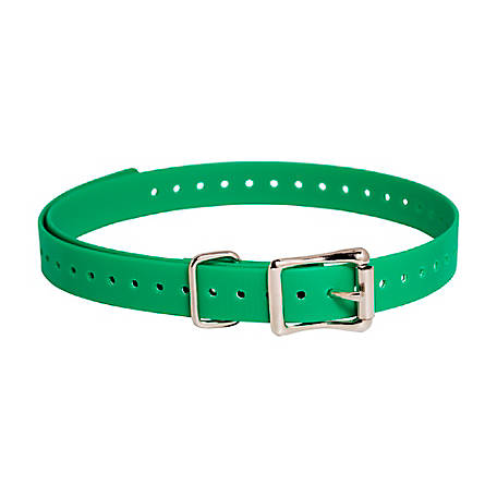 SportDOG 3/4 in. Collar Strap