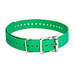 SportDOG 1 in. Collar Strap
