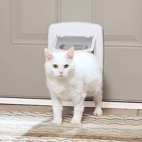PetSafe 4-Way Locking Cat Door, Exterior/Interior, White