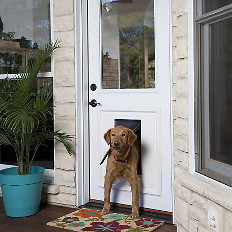 Petsafe Panel Pet Door Insert Paintable White Large At Tractor