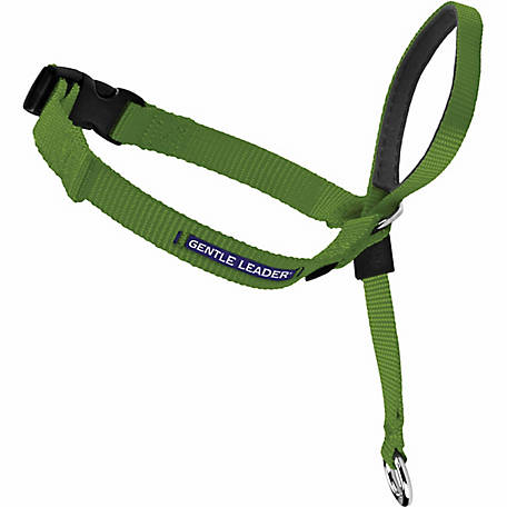 PetSafe Gentle Leader Headcollar Quick Release