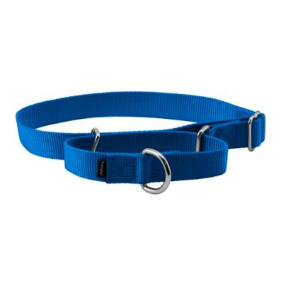 PetSafe Premier Martingale Collar