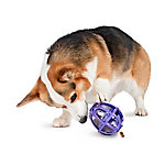 PetSafe Busy Buddy Kibble Nibble Feeder Ball