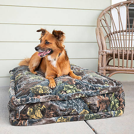 Snoozer Luxury Pillow Top Dog Bed