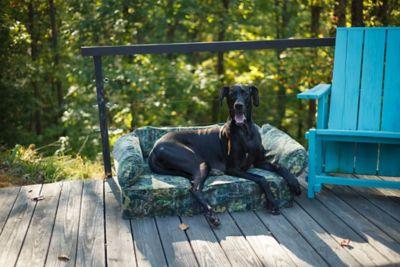 Buy Snoozer Luxury Pet Sofa Online
