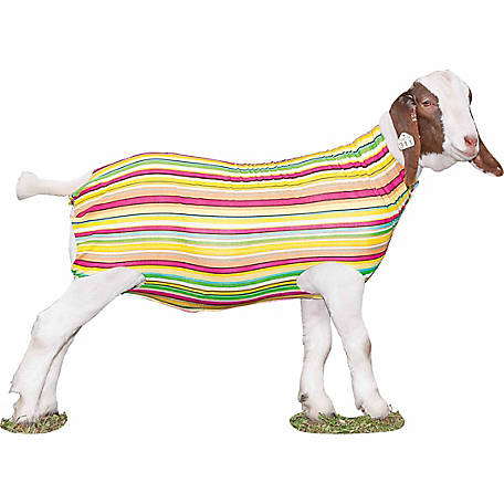 Weaver Leather Patterned Spandex Goat Tube, Pastel Stripes