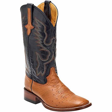a624139ba1b Ferrini Men's Smooth Ostrich Cowboy Boots S-Toe at Tractor Supply Co.