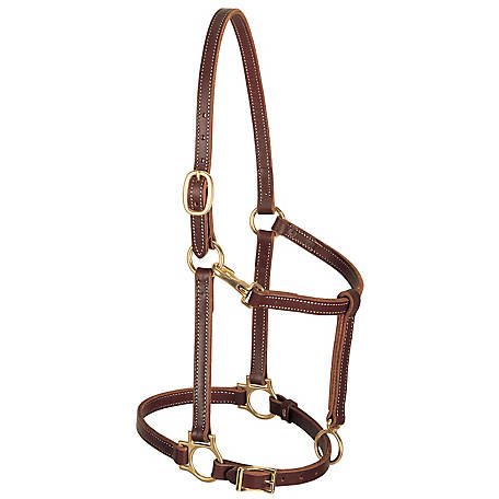 Weaver Leather Track Halter, 3/4 in. Leather, Cob, Mahogany, 10-0153