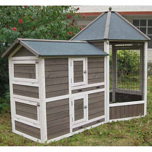 Innovation Pet Gazebo Medium Chicken Coop
