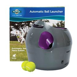 Shop PetSafe Automatic Ball Launcher at Tractor Supply Co.