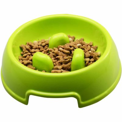 PetPals Slow Feeder; Green