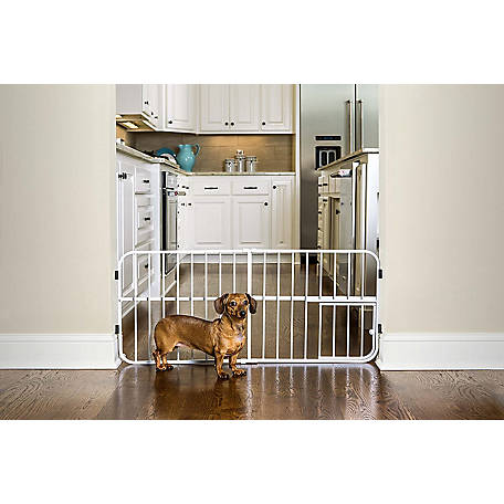 Carlson Lil Tuffy Expandable Gate, 0618 DS