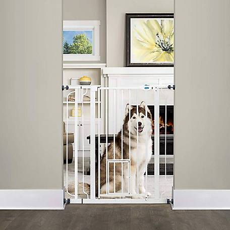 Carlson Extra Tall Walk-Through Pet Gate