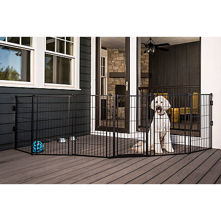 Carlson Outdoor 2-in-1 Extra Tall Super Wide Gate and Pet Yard, 36 on. H