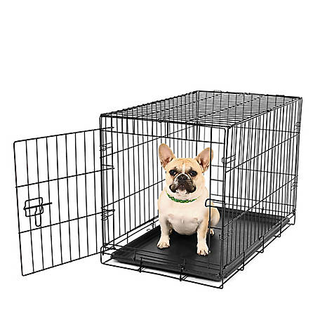 Carlson Secure Single Door Crate, Small