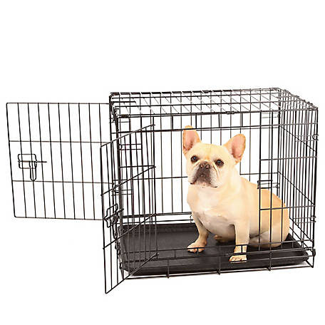 Carlson Secure Double Door Crate, Small
