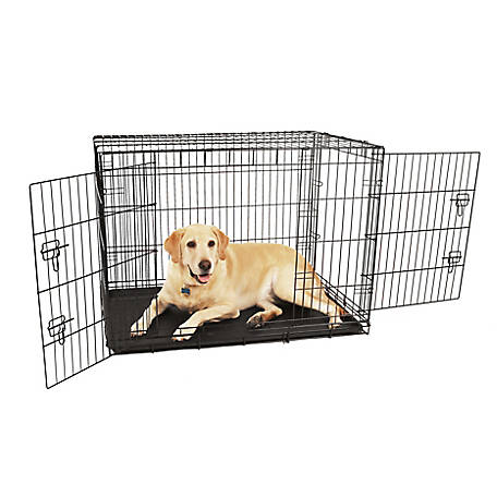 Carlson Secure Double Door Crate, Large