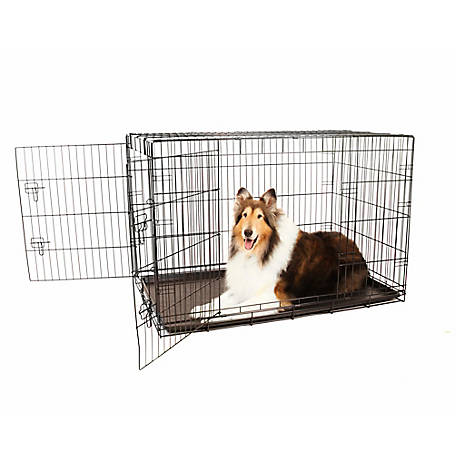 Carlson Secure Double Door Crate, Extra Large